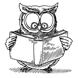 Owl from book cover